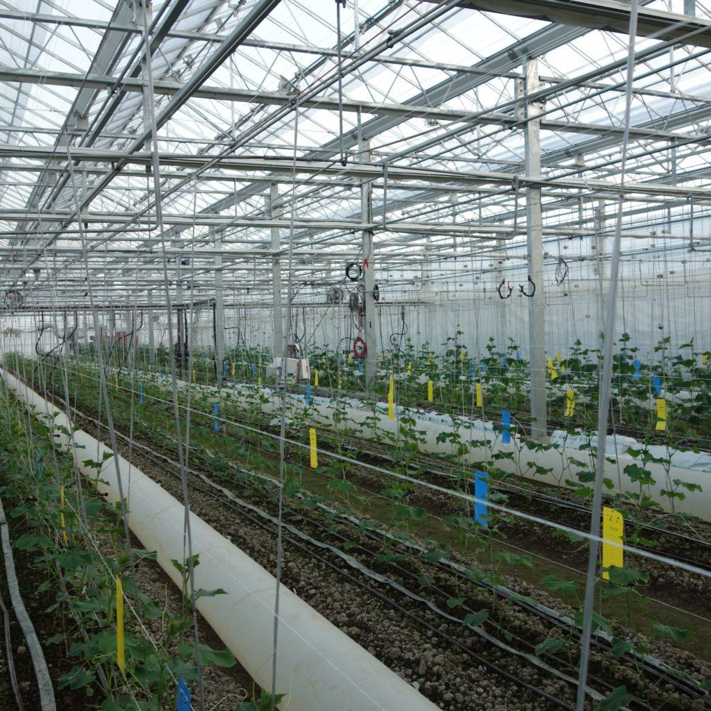 日本農業新聞の興味深い記事(各社の統合環境制御盤)